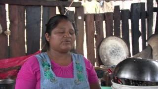 Download Mujeres Chiapanecas Productoras de Tostadas de Maíz Video