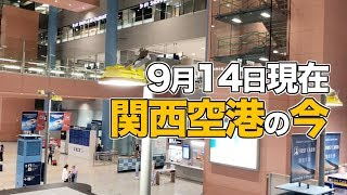 Download 9月14日現在、関西空港の復旧具合を確認してみた Video