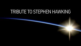 Download 'I had always dreamed of spaceflight': Tribute to Stephen Hawking (360 Video) Video