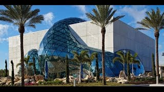 Download The Dali Museum: An Unparalleled Experience Video