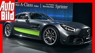Download Mercedes-AMG GT-R Pro - AMG GT Facelift (2018) Sitzprobe / Details Video
