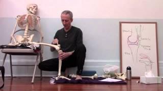 Download Yoga anatomy: Knee alignment in Warrior II Video