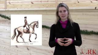 Download Horse Terms Explained Video