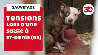 Download Tensions lors d'un sauvetage de chiens à Saint-Denis Video
