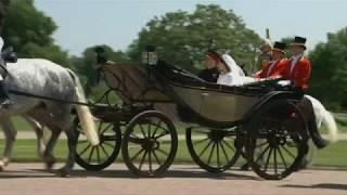 Download Royal Wedding ~ Prince Harry & Meghan Markle, A Wedding For Oscar! Video