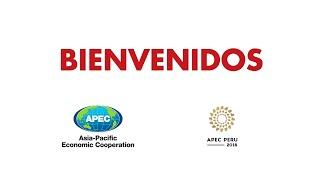 Download Bienvenidos a APEC 2016 - Perú Video