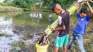 Download Unique Fish Trapping - Smart Boys Make Fish Trap Using Banana Tree | New Technique Of Catching Fish Video