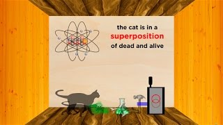 Download The Heisenberg Uncertainty Principle Part 1: Position/Momentum and Schrodinger's Cat Video