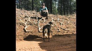 Download elk sheds 2018 solo trip part 2 Video