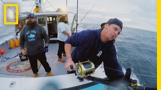 Download Catch of the Week - Nine Foot Monster | Wicked Tuna: Outer Banks Video