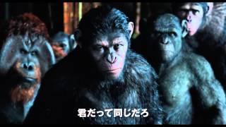 Download 映画「猿の惑星:新世紀(ライジング)」予告編(100秒) Video