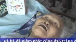 Download Cụ Bà 82 Tuổi Biết Trước Ngày Giờ Vãng Sanh Video