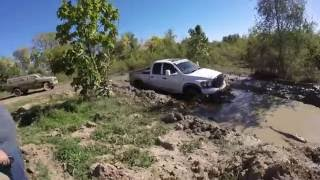 Download Chevy Duramax, Dodge Ram, Gmc Sierra, Chevy Silveado Mudding! Video
