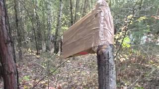 Download Minecraft en vida real:EP5 Talando el bosque Video
