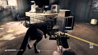 Download Fallout 4 Heel DogMeat Video