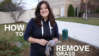 Download How to Remove Grass // Garden Answer Video