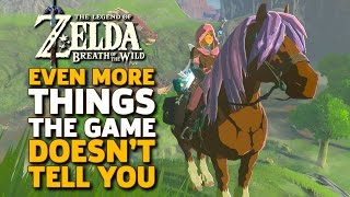 Download Even More Things I Wish I Knew Before I Started Zelda: Breath of the Wild Video