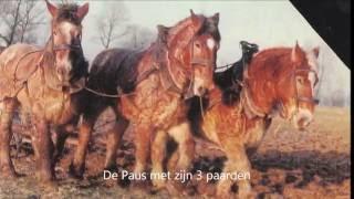 Download Oost Zeeuws Vlaanderen natuur - Zaamslag.wmv Video
