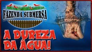 Download A DUREZA DA ÁGUA Video
