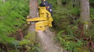 Download Tigercat 5195 Directional Felling Saw advantages Video
