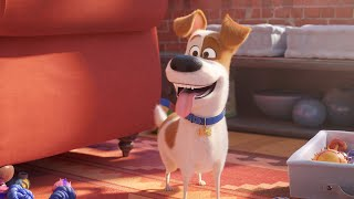 Download The Secret Life of Pets 2 - Trailer - SFF 19 Video