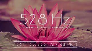 Download Solfeggio 528Hz La frecuencia del amor - reparación y curación del ADN - Activación del tercer ojo Video