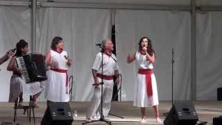 Download JOTAS DE PICADILLO GRUPO LA RIBERA CANTA TUDELA NAVARRA) 26- 07- 2013 Video