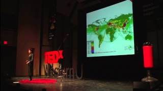 Download The Sustainability Challenge that Business Can't Ignore: Tima Bansal at TEDxWesternU Video