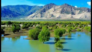 Download Chinese engineers plan 1,000km tunnel to make Xinjiang desert bloom Video