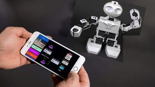 Download TOP - 5 Futuristic Personal Robots For Everyone Video