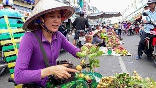 Download Du lịch khám phá thành phố Sa Đéc || Sa Dec City Discovery || Vietnam Discovery Travel Video