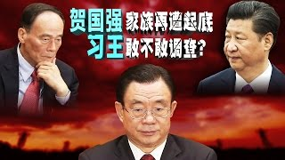 Download 焦点对话:贺国强家族再遭起底,习王敢不敢调查? Video