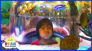 Download Ryan inside Sealife Aquarium with Emma and Kate for the first time! Video