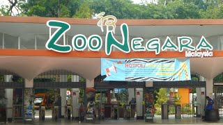 Download Zoo Negara Kuala Lumpur, Malaysia Video