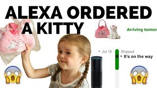 Download OUR 4-YEAR-OLD ORDERED A KITTY WITH ALEXA... Video