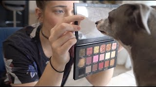 Download My Dogs Pick My Makeup Video