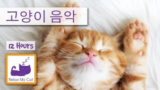 Download 슬리피 애완 동물 애완 동물 치료 음악 : 고양이 편안한 음악 Video