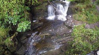 Download 16 Killarney National Park - Ireland May 2016 Video