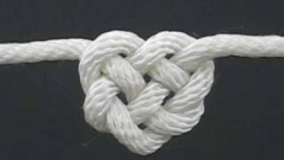 Download How to Tie the Celtic Heart Knot by TIAT (A Knotty Valentine) Video