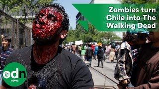 Download Bloodthirsty zombies turn Chile into The Walking Dead Video