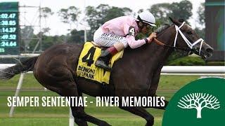 Download Semper Sententiae - 2019 - The River Memories Stakes Video