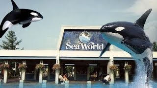 Download EXPLORING FORMER SEA WORLD CLEVELAND OHIO Video