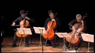 Download Cello Consort - Giovanni Sollima - 17 maggio 2012 Video