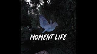 Download Moment Life Community『MALDEN』 Video