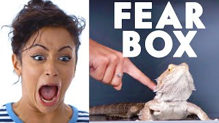 Download Liza Koshy Touches a Bearded Dragon, Chinchilla & Other Weird Stuff in the Fear Box | Vanity Fair Video