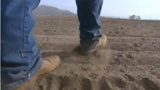 Download California farms turn to well-drilling to combat drought Video