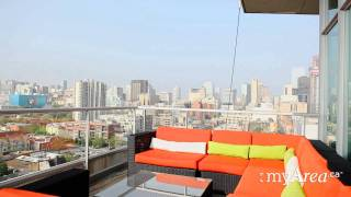 Download Toronto Real Estate - Penthouse Skyloft with Two Terraces - myArea.ca Video