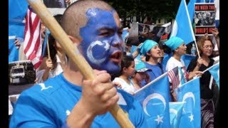 Download The Uyghur emergency: The causes and consequences of China's mass incarceration of Turkic Muslims Video