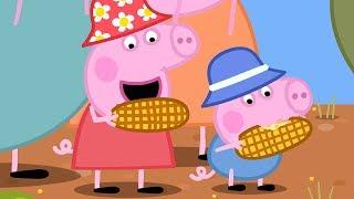 Download Peppa Pig Français ❤️Peppa! | 1 Heure | Dessin Animé Pour Enfant Video