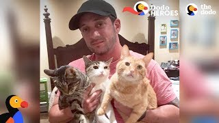 Download Couple Devotes Lives To Rescuing Special Needs Cats | Dodo Heroes Video